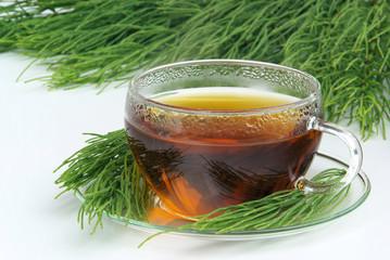 Tee Ackerschachtelhalm - tea field horsetail 05