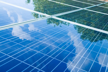 Solar panels with tree reflection