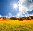 roleta: Autumn field