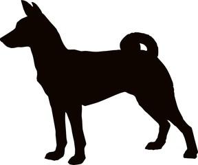 Basenji silhouette