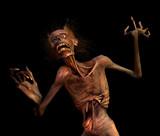 Shrieking Zombie poster