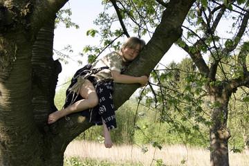 Blondes Mädchen auf Baum