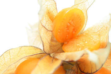 Halved physalis, isolated on white