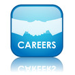 "Square ""CAREERS"" button with reflection (blue)"