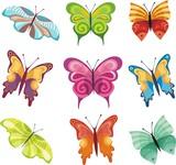 Fototapety butterflies set