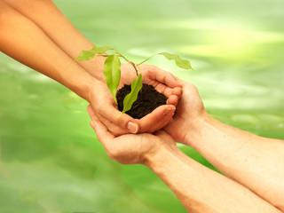 business écologie concept 3