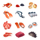 Set of colorful isolated fish and seafood for calorie table poster