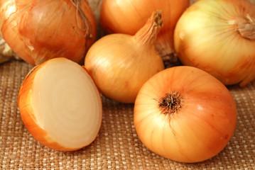 onion on burlap