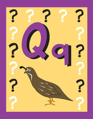 Flash Card Letter Q nouns. See whole alphabet in my series!