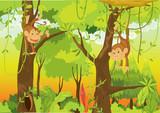 Fototapeta roślina małpa