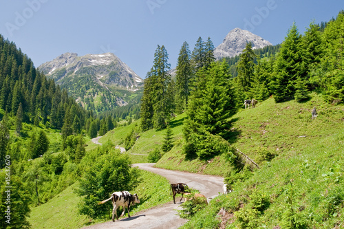 Berge © Netzer Johannes