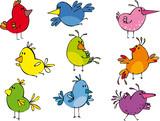 Fototapety Set of funny small birdies