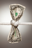 American Dollar Tied in Rope