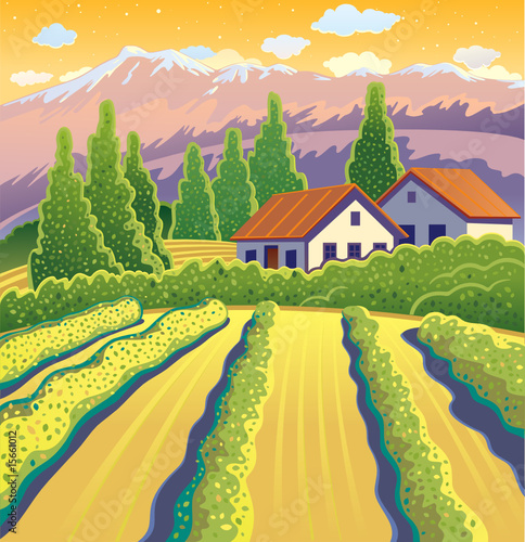 Solar Landscape with vineyard