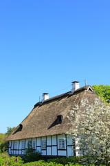 Haus,Reetdach,Fischerdorf Kopperby Arnis,Schleswig-Holstein