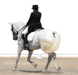 Advanced Dressage Test with path poster