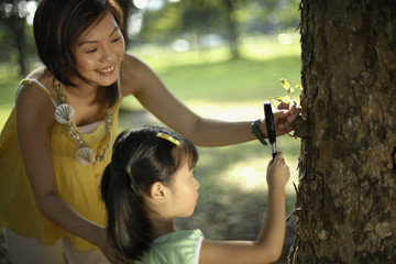 Woman and young girl using magnifying glass on tree trunk