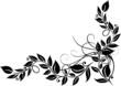 Blätter, Laub, Herbst, filigrane Ranke