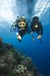 Kinder lernen Tauchen Children learn diving 
