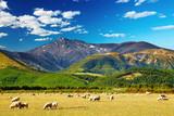 Mountain landscape, New Zealand - Fine Art prints