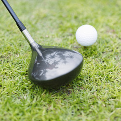 Golf club beside golf ball