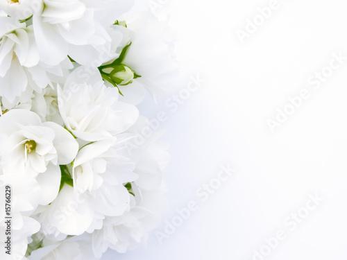 Jasmine Bouquet - 15766229