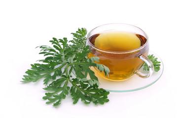 Tee Wermut - tea wormwood 02