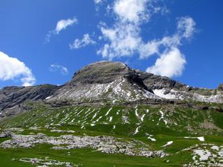 Neige d'été sur l'alpe.