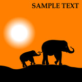 Africa landscape with sundown and elephants poster