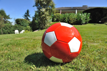 Roter Ball auf Wiese III
