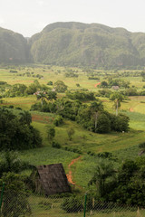 Landschaft bei Vinealis