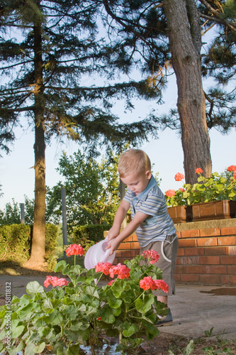 Boy watering flowers  4