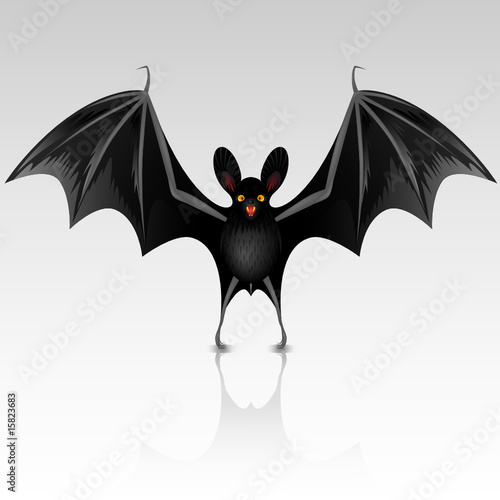 Black bat on a white background