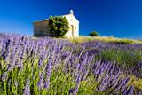 chapel, Plateau de Valensole, Provence, France