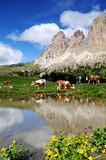 Fototapety Montagna, Dolomiti, Alpi, Italia