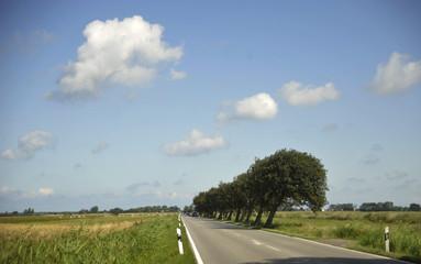 Landschaft in Mecklemburg-Vorpommern