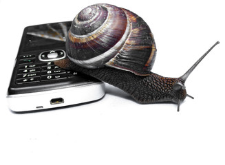 Concept for communications - snail on a phone