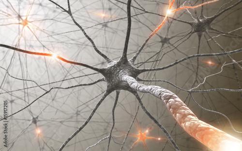 Leinwandbild Motiv Inside the brain. Concept of neurons and nervous system.