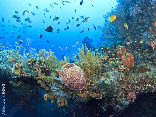 Leinwanddruck Bild Underwater wreck of the Liberty