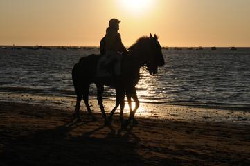 carrera de caballos en Sanlucar de Barrameda CADIZ
