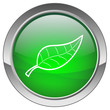 "Bouton ""Feuille"" - ""Leaf"" button"