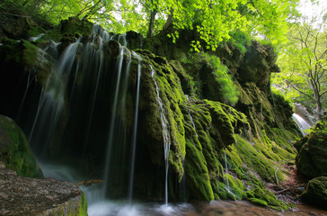 Waterfalls in the forest in spring