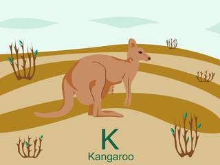 Animal alphabet flash card, K for kangaroo