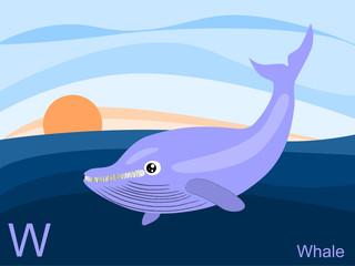 Animal alphabet flash card, W for whale