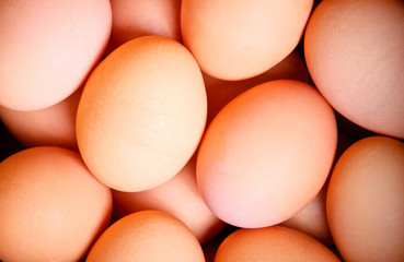 abstract eggs background