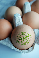 "Eggs stamped ""100% Organic"""