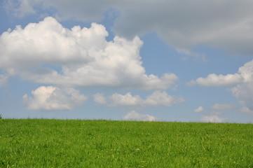 ciel menaçant sur une colline verdoyante