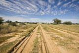 Africa, Botswana,Track through Kalahari Desert