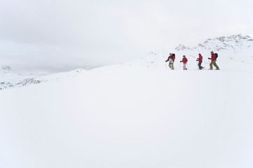 Italien, Südtirol, Vier Menschen Schneeschuhwandern