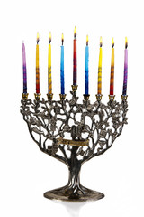 Seventh day of Chanukah. XXL